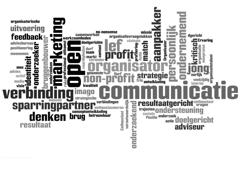 Wordcloud_RaekeLinks